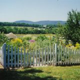Gardens and Fencing